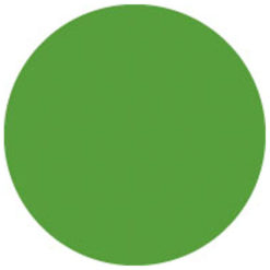 Colour Sheet 122 x 55 cm Verde felce