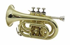 DIMAVERY TP-300 Bb Pocket Trumpet, gold