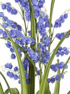 EUROPALMS Bellflower, purple, 105cm