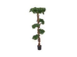 EUROPALMS Bonsai tree, 180cm