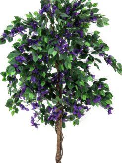 EUROPALMS Bougainvillea, lavender, 180cm