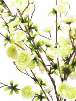 EUROPALMS Cherry spray, cream, 60cm