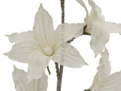 EUROPALMS Clematis Branch (EVA), white