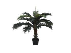 EUROPALMS Coconut palm, 90cm