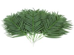 EUROPALMS Coconut palm branch 80cm 12x