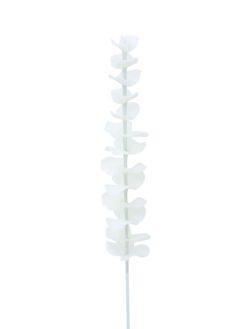 EUROPALMS Crystal eucalyptus, white 81cm 12x
