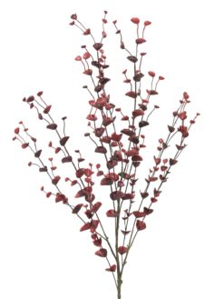 EUROPALMS Eucalyptus spray, red, 110cm