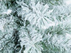 EUROPALMS Fir tree, flocked, 210cm