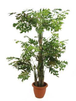 EUROPALMS Fishtail bush, 295cm