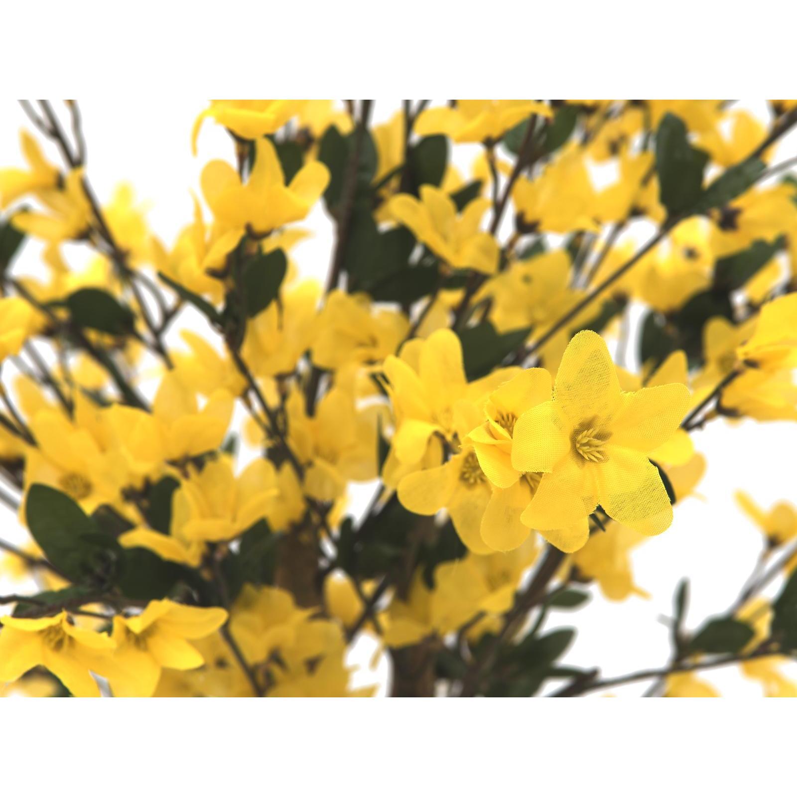 Europalms forsythia tree with 4 trunks yellow 120 cm su for Bougainvillea bonsai prezzo