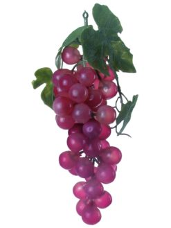 EUROPALMS Grapes with leaves, red
