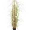 EUROPALMS Grass bush, 150cm