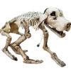 EUROPALMS Halloween Skeleton Dog, 71x40x25cm