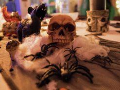 EUROPALMS Halloween spider web white 100g UV active