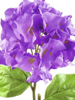 EUROPALMS Hydragena spray, lavender, 76cm