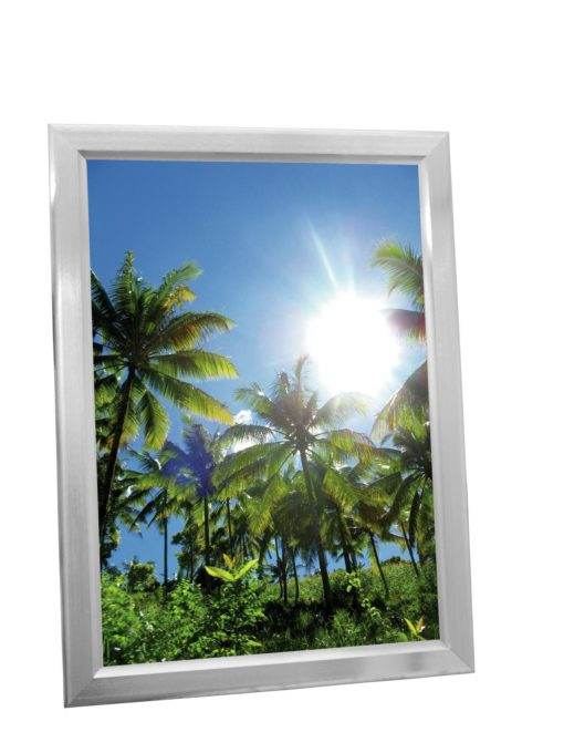EUROPALMS Illuminated billboard A1, aluminium