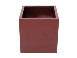 EUROPALMS LEICHTSIN BOX-50, shiny-red