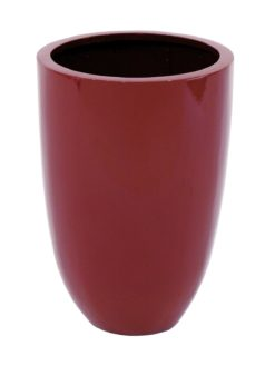 EUROPALMS LEICHTSIN CUP-49, shiny-red