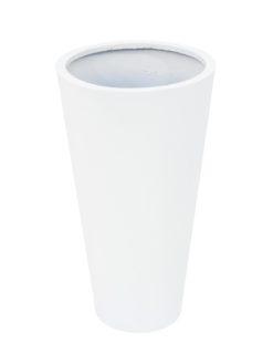 EUROPALMS LEICHTSIN ELEGANCE-69, shiny-white
