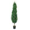 EUROPALMS Laurel Cone Tree, 180cm