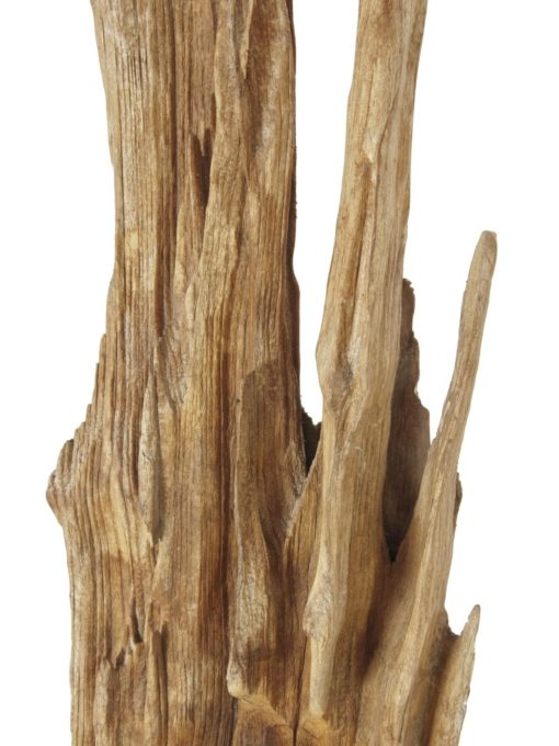 EUROPALMS Natural wood sculpture, slim 190cm