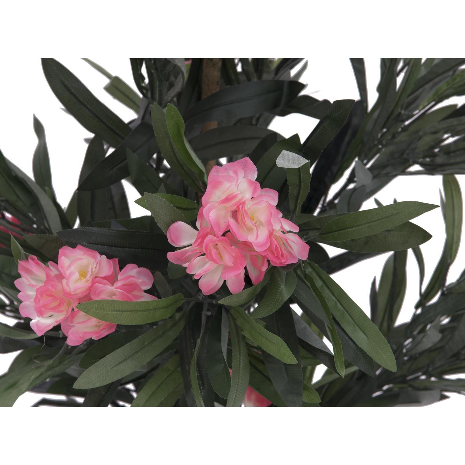 Europalms oleander tree pink 150 cm su mondospettacoli for Bougainvillea bonsai prezzo