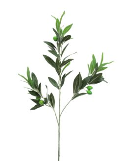 EUROPALMS Olive branch with fruits 68cm 6x