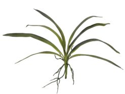 EUROPALMS Orchid leaf (EVA), green, 45cm