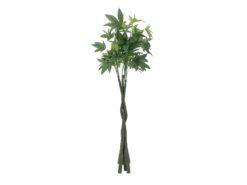EUROPALMS Pachira balltree, 160cm