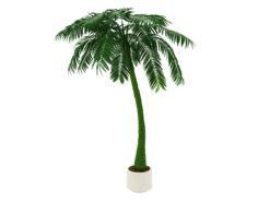 EUROPALMS Palm, 1 trunk, 300cm, green