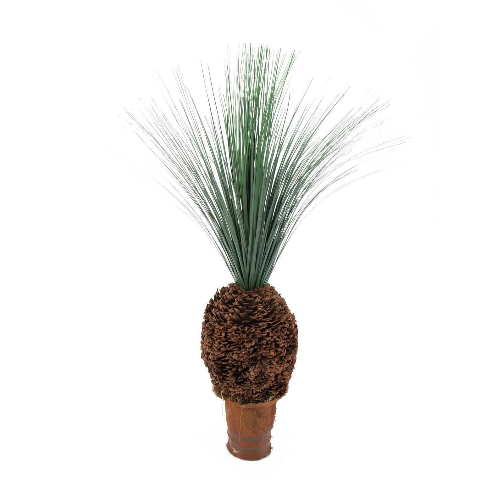 EUROPALMS Rain grass palm with nodule trunk, 90cm