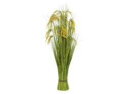 EUROPALMS Reed Grass Bunch 118cm