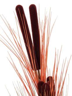 EUROPALMS Reed grass w/ cattails, light-brown,152cm