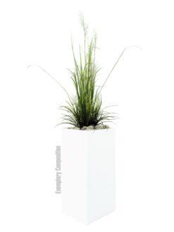 EUROPALMS River grass April, 175cm