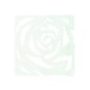 EUROPALMS Room Divider Rose clear 4x