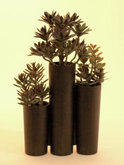 EUROPALMS Succulent trio, 43cm