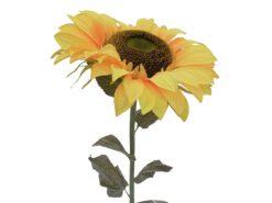 EUROPALMS Sunflower, 130cm