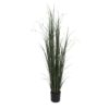 EUROPALMS Willow branch grass, 183cm