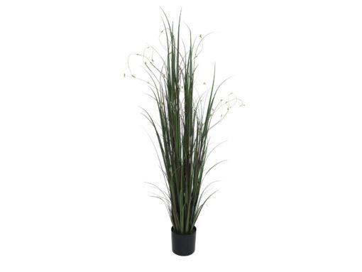 EUROPALMS Willow branch grass, 183cm