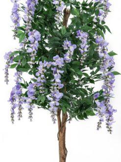 EUROPALMS Wisteria, purple, 180cm