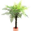 EUROPALMS Woodwardia tree, 180cm