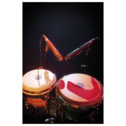 PL-07 Microfono dinamico per strumento