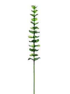 EUROPALMS Crystal eucalyptus, green 81cm 12x