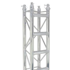 F34 PL 3.0m Truss Ladder