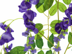 EUROPALMS Wisteria Branch, purple