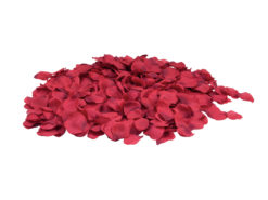 EUROPALMS Rose Petals, red, 500x