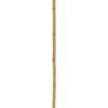 EUROPALMS Bamboo tube, Ø=5cm, 200cm