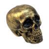 EUROPALMS Halloween Skull, gold