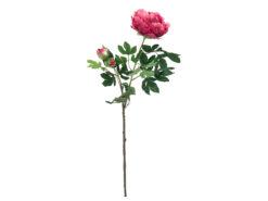 EUROPALMS Peony Branch Premium, magenta, 100cm