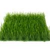 EUROPALMS Artificial grass tile, shade, 25x25cm